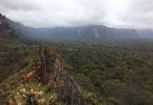 Beautiful nature in Brazil